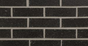 Black Pearl (RA11-9003) Image