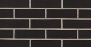Black Pearl (SA11-9003) Image